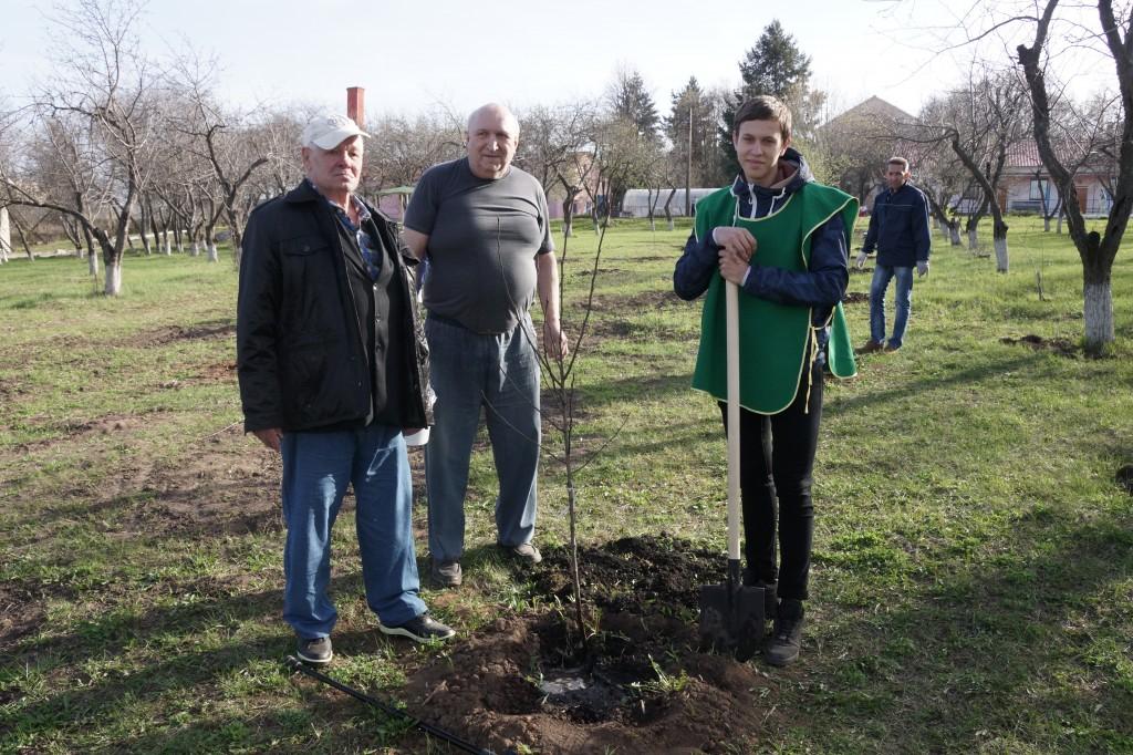 ЭКОлидеры посадили деревья
