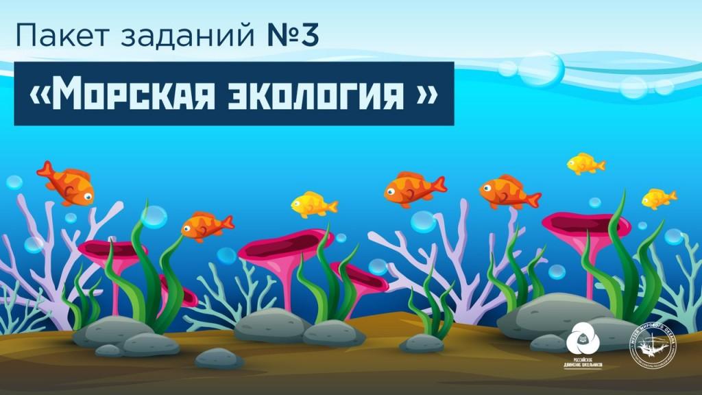 ЭКОурок «Морская экология» в рамках Всероссийского конкурса «На старт, ЭКО-отряд»
