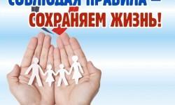 ПДД челлендж «Соблюдаем правила-сохраняем жизнь»